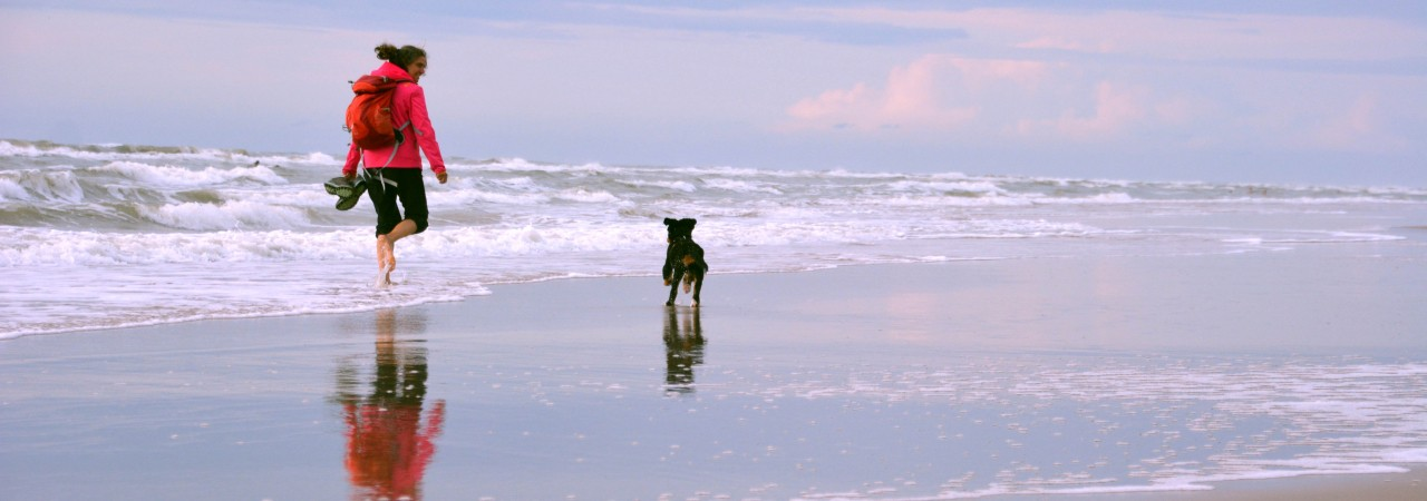 woman running with the dog at the sea.jpg