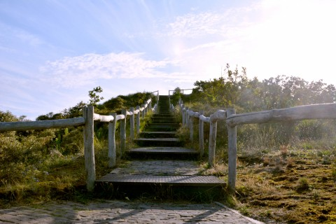 stairs in the dunes.jpg