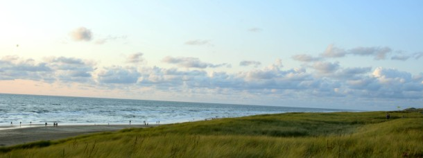 dunes at the sea in the evening egmond aan zee.jpg