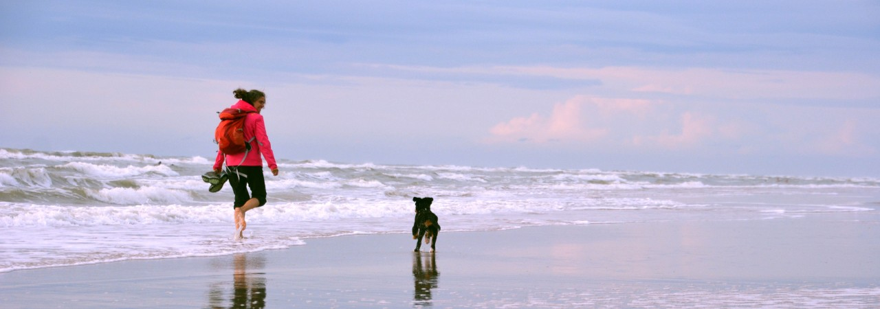woman running with the dog at the sea Header.jpg