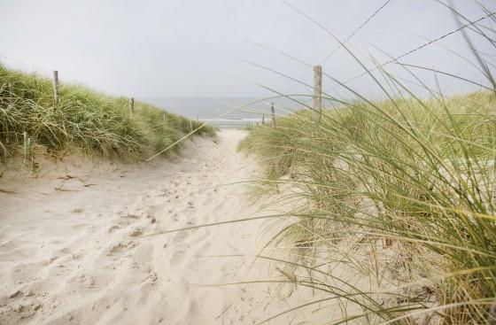 KDC_strand_duinen_zee.jpg