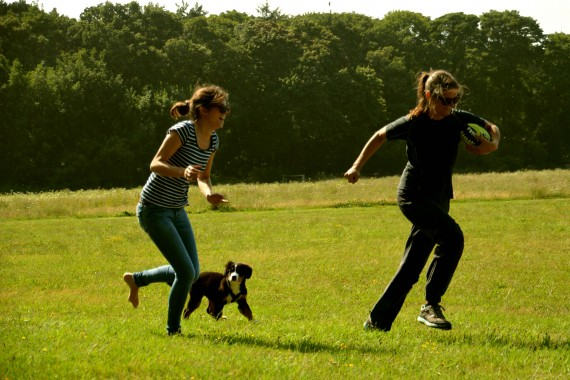 running with a ball and dog.jpg